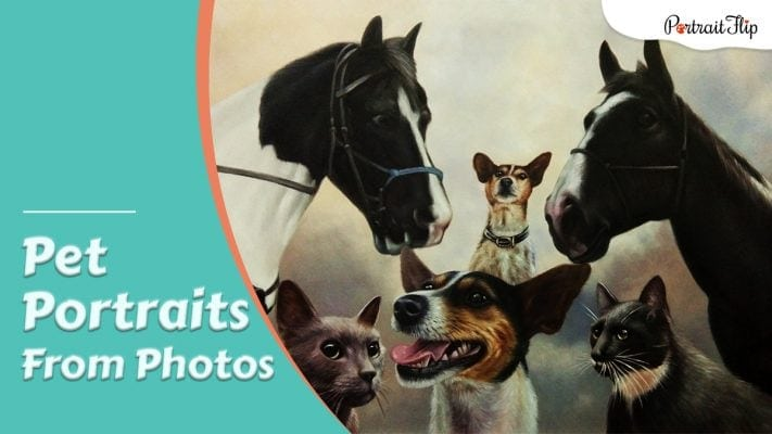A compilation pet portrait including two horse, two cats and two dog with the title on it.