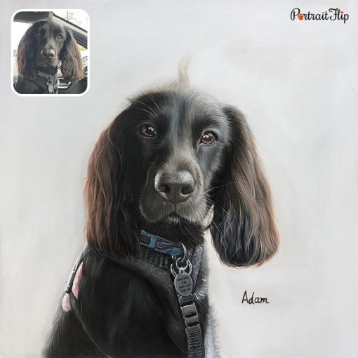 Oil Pet Portrait From Photo
