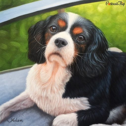 Pet Acrylic Portraits