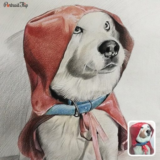Handmade Colored Pencil Pet Drawing From Photo