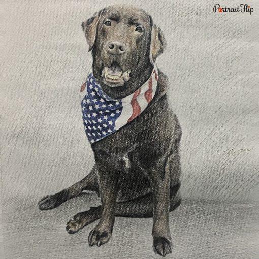 Pet Colored Pencil Portrait