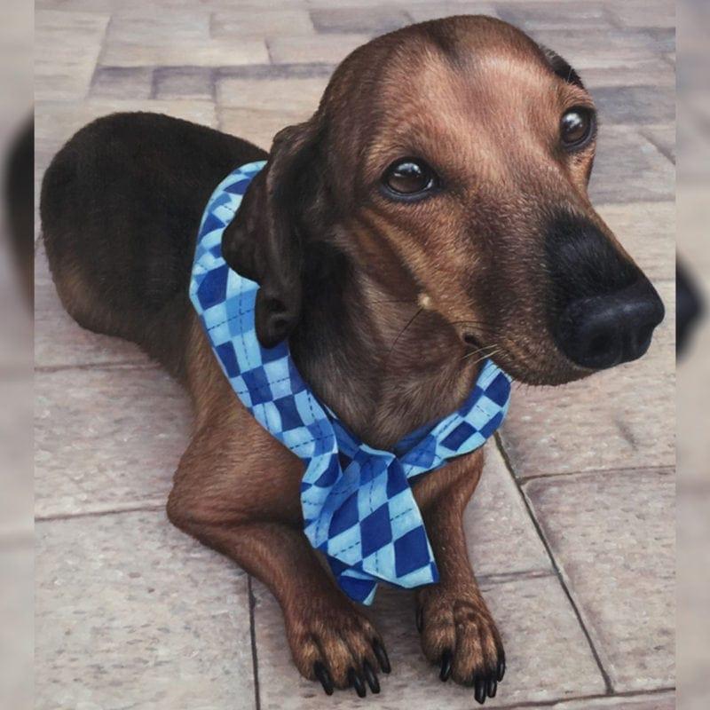 Pet oil paintings