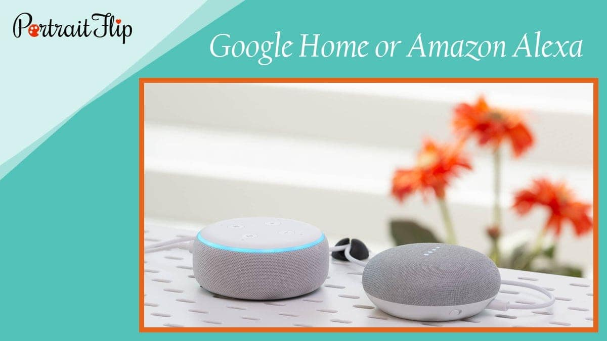 Google home or amazon alexa