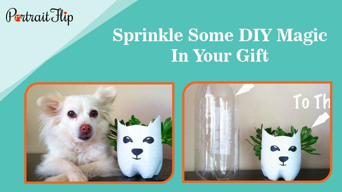 Sprinkle some diy magic in your gift