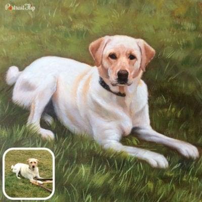 Acrylic pet portraits from photos