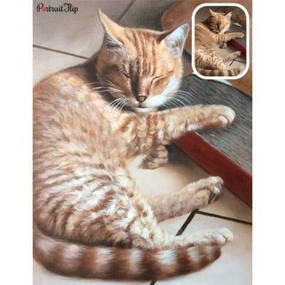 Oil cat portraits