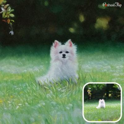 Oil pet portrait (3)