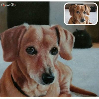 Pet acrylic portrait from photos
