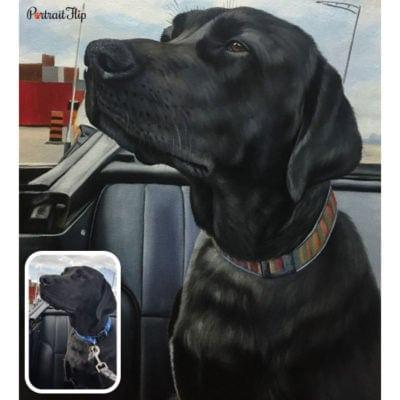 Pet oil portrait from photo