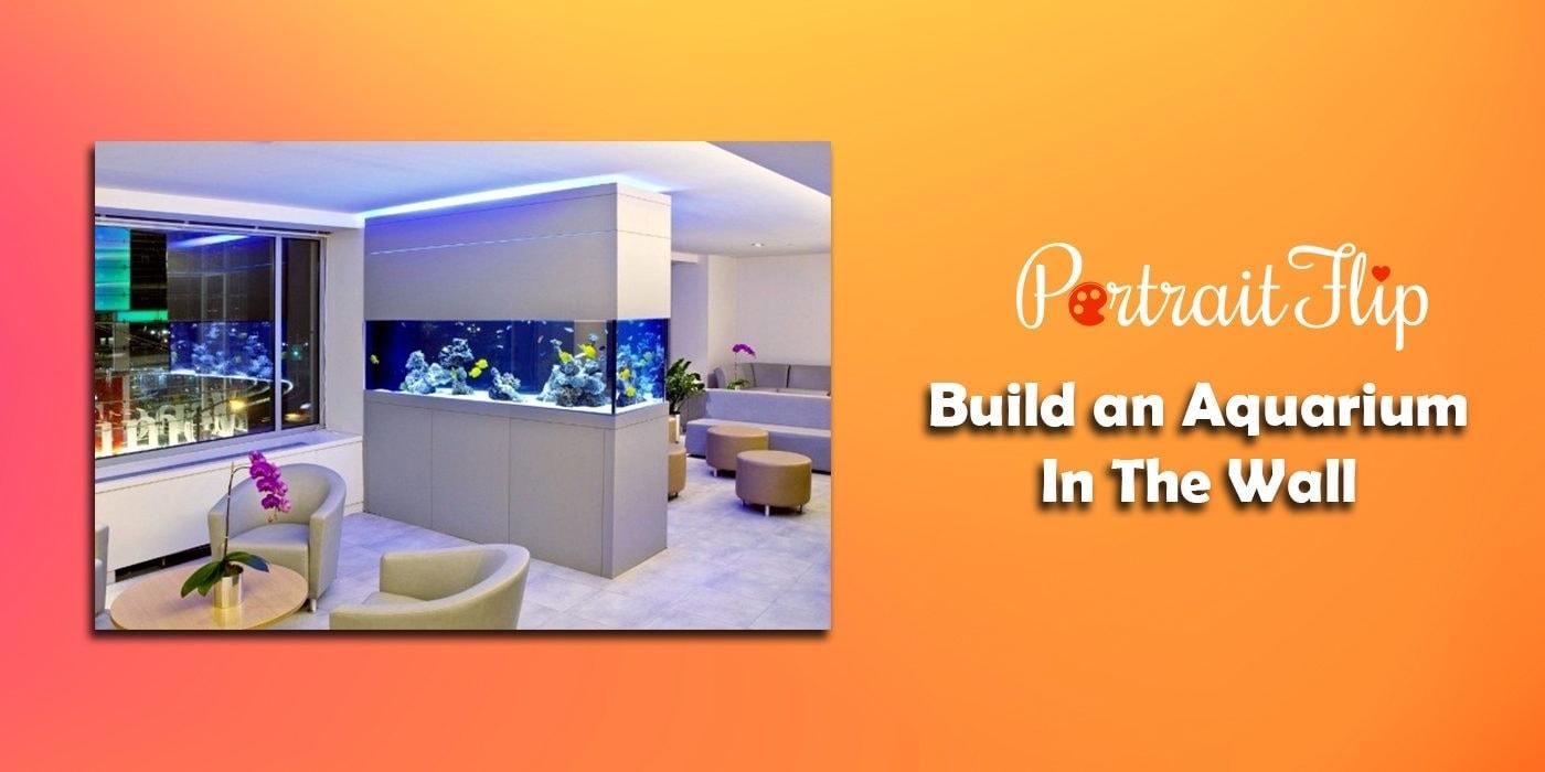 build an aquarium in the wall