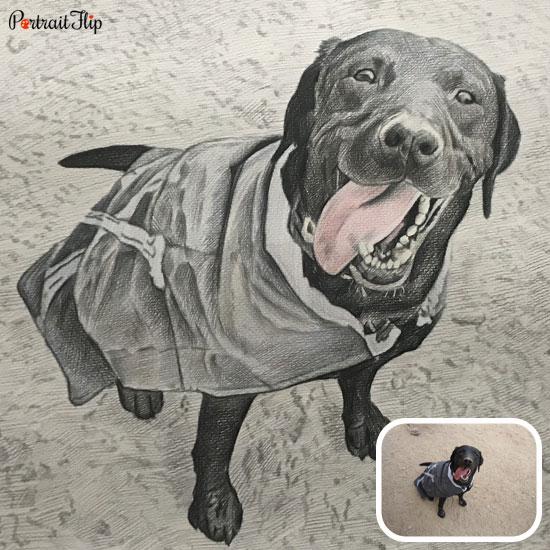 Handmade pet painting from photo