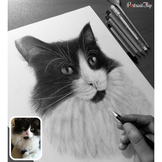 Office table charcoal pet drawing