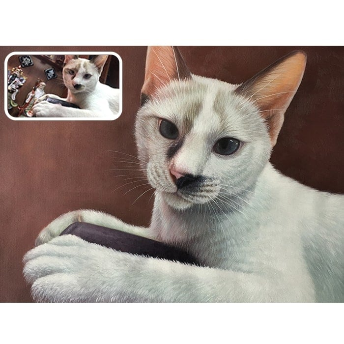 cat acrylic painting