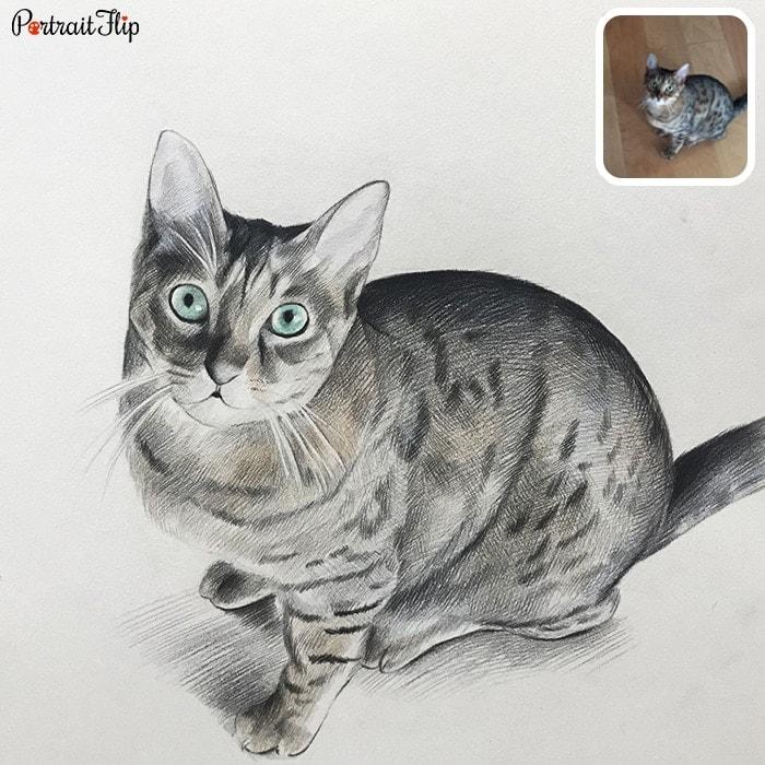 CAT COLORED PENCIL PORTRAIT painting
