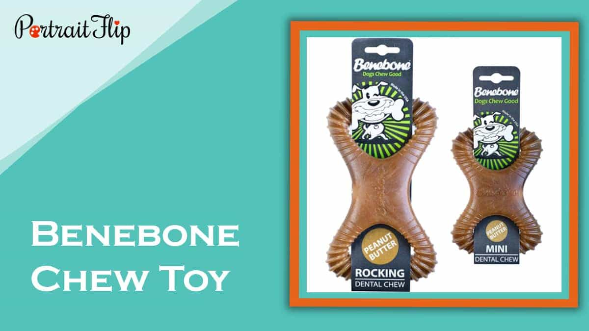 Benebone chew toy