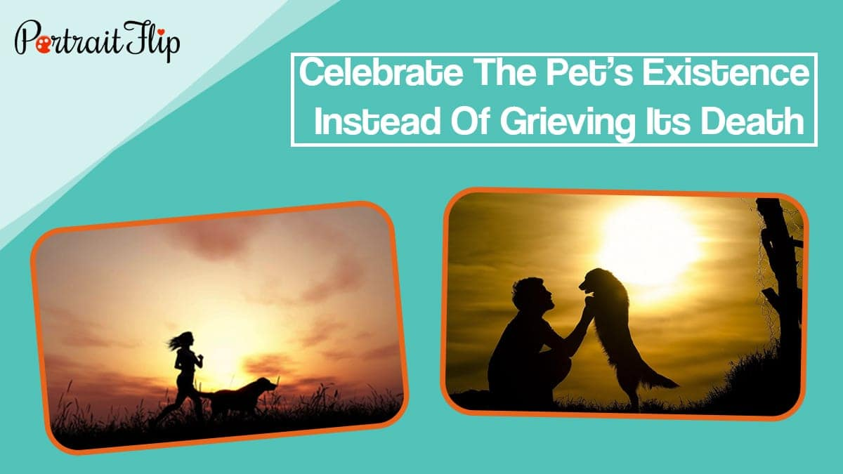 Celebrate the pet's existence instead of grieving its death