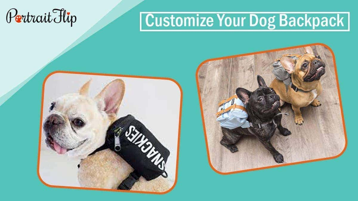 Customize your dog backpack