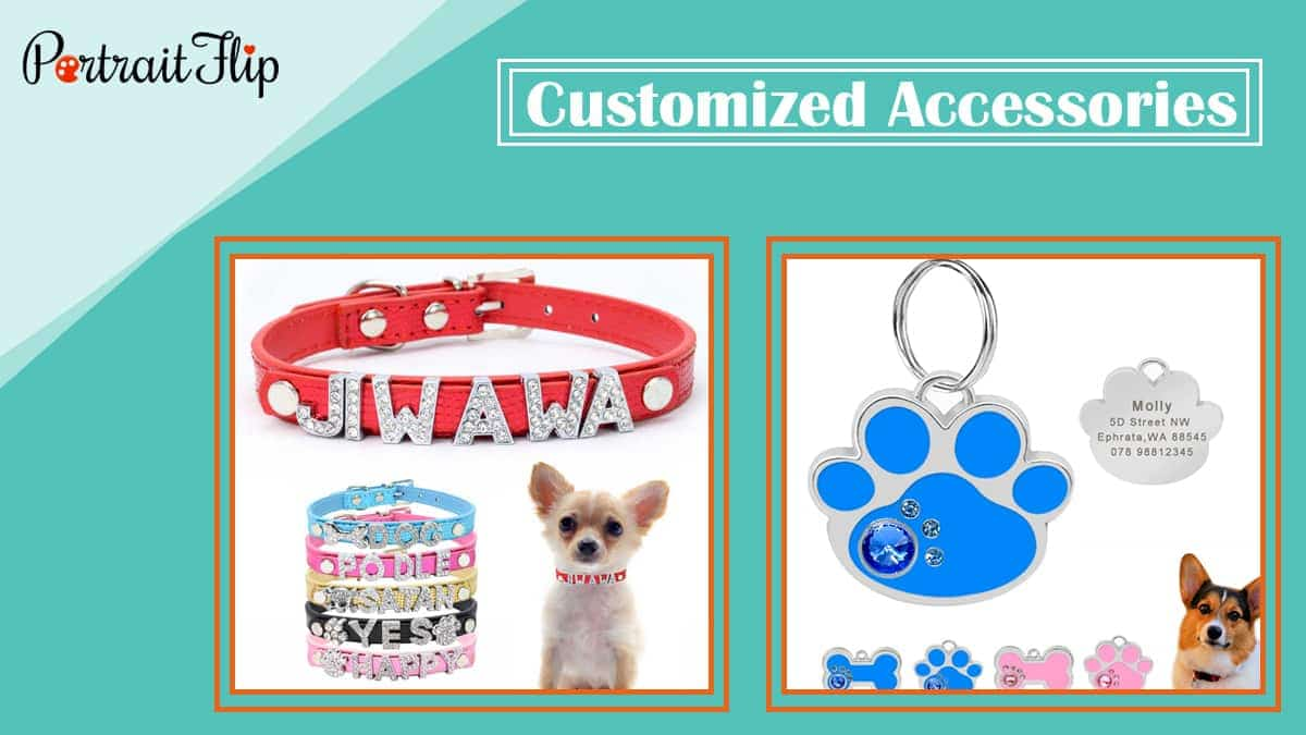 Customized accessories pet