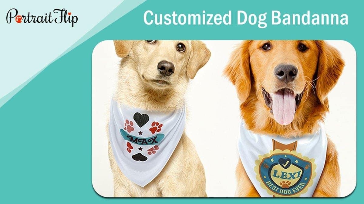 Customized dog bandanna
