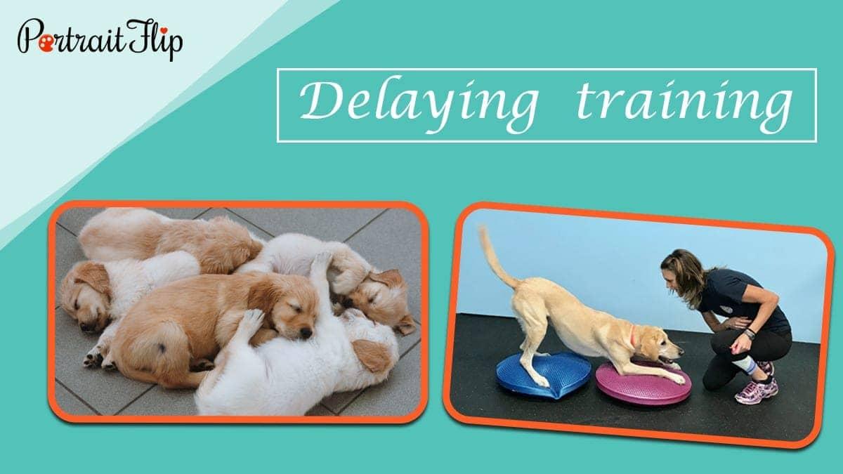Delaying training