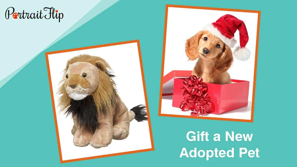 Gift a new adopted pet