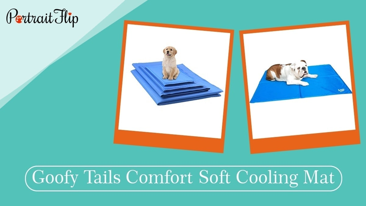 Goofy tails comfort soft cooling mat