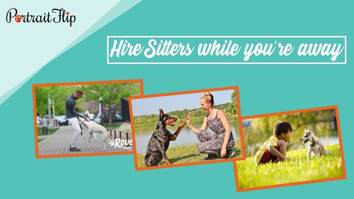 Hire sitters while you're away