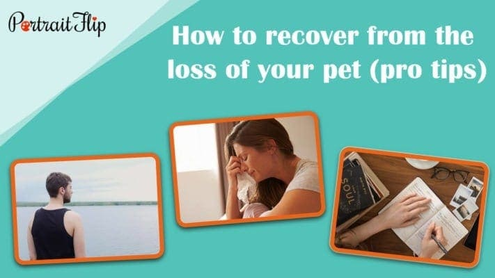 How to recover from the loss of your pet (pro tips)