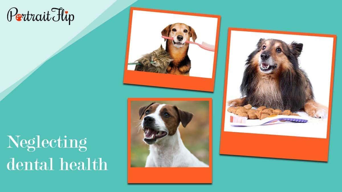 Neglecting dental health