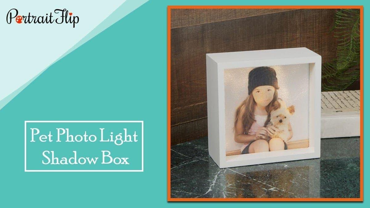 Pet photo 6 inch x 6 inch led light shadow box
