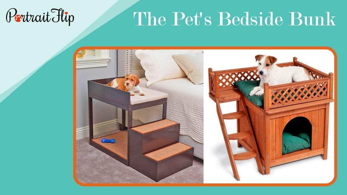 The pet's bedside bunk