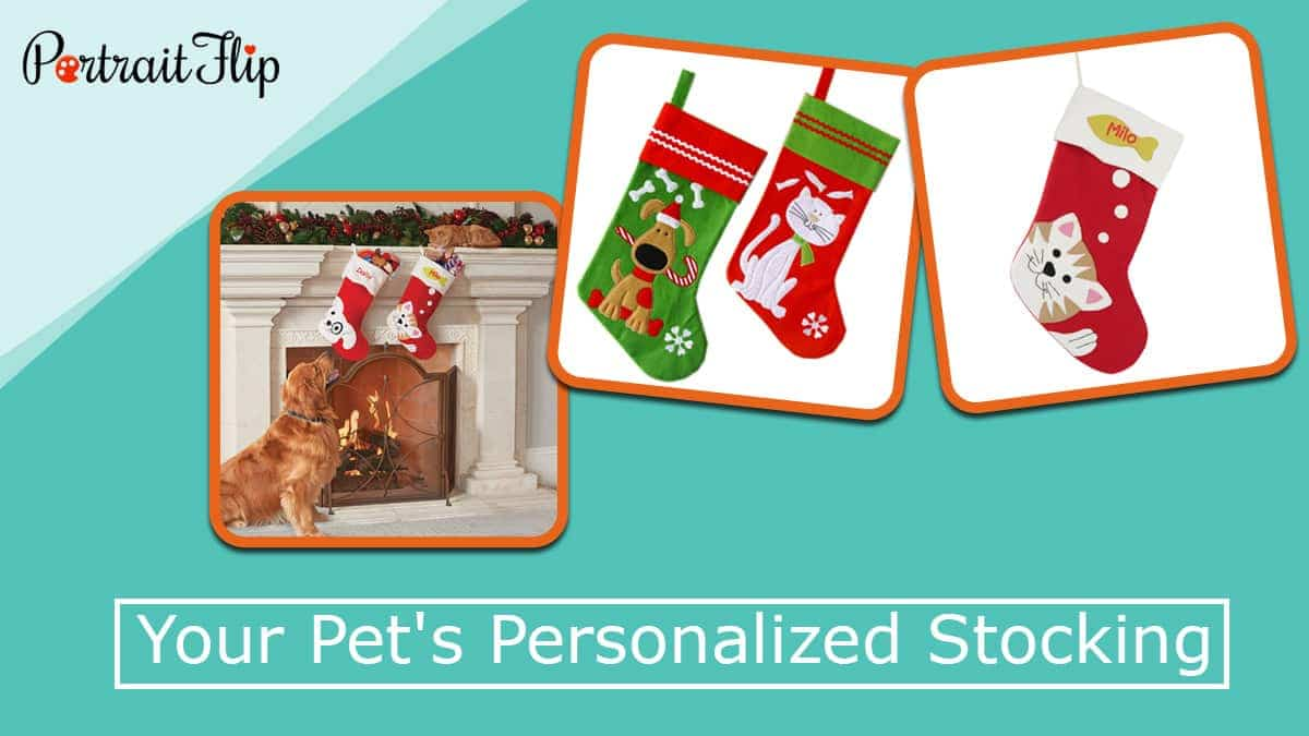 Your pet's personalized stocking