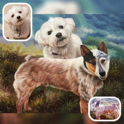 Dog gallery type6