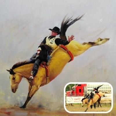 Horse gallery type1