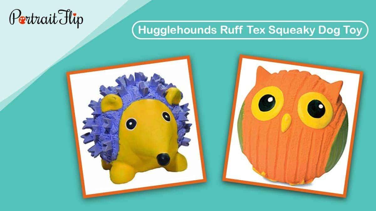 Hugglehounds ruff tex squeaky dog toy