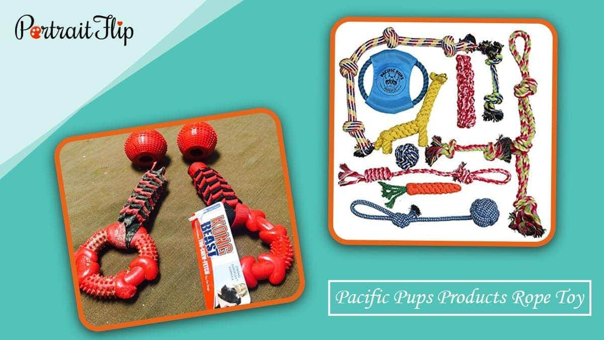 Pacific pups products rope toy