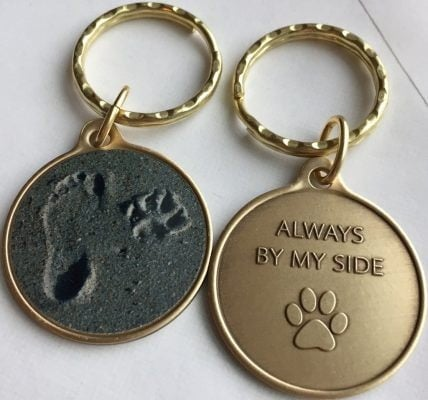 Pet key chain