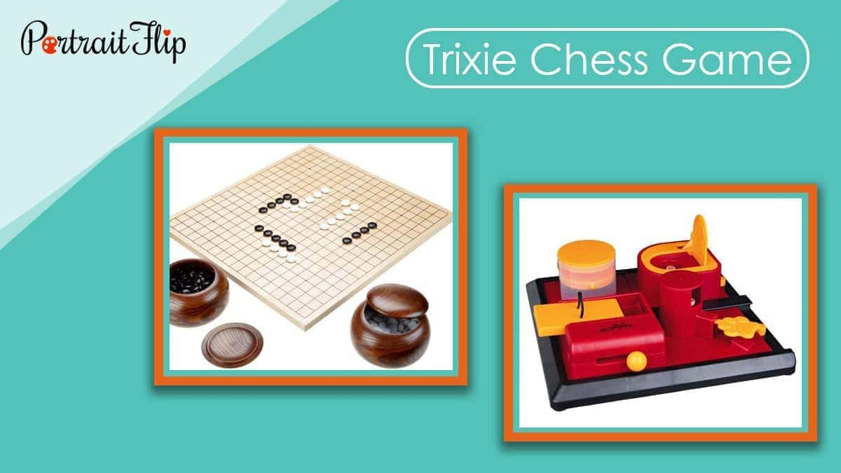 Trixie chess game