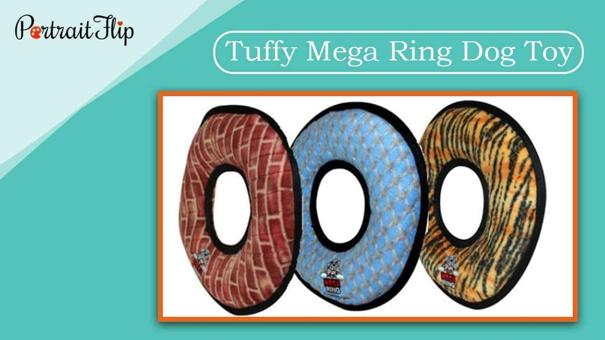 Tuffy mega ring dog toy