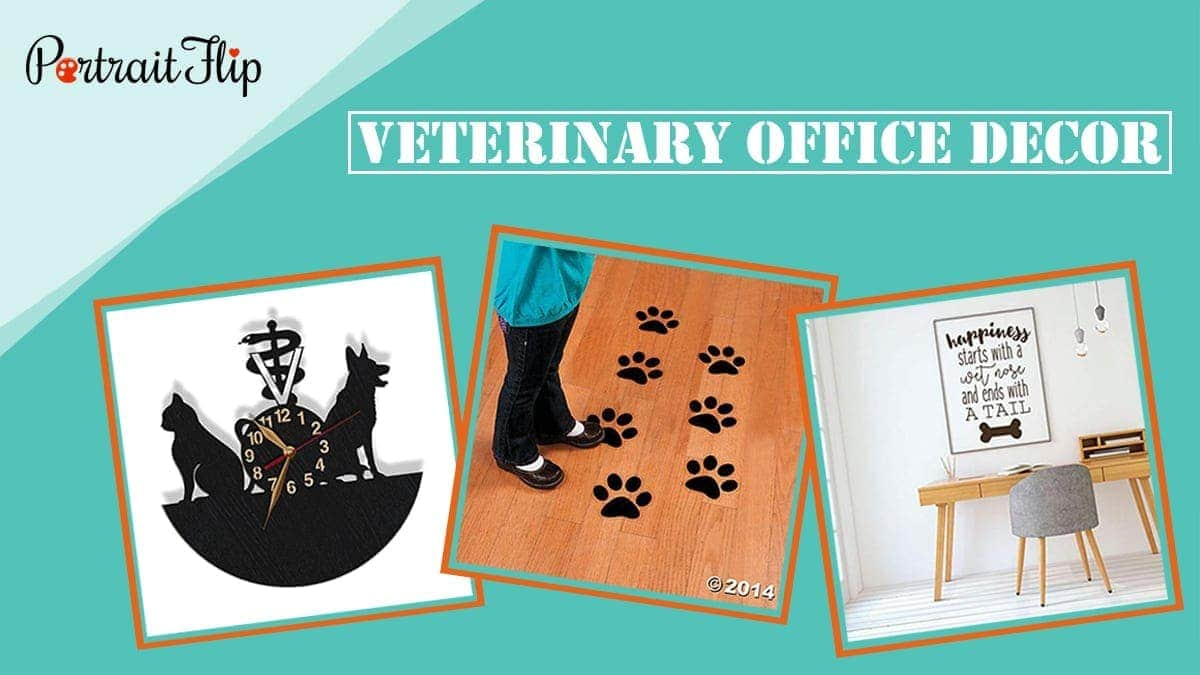 Veterinary office decor