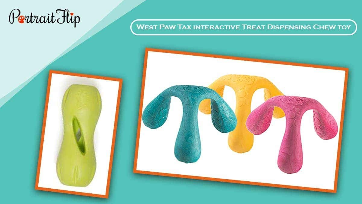 West paw tax interactive treat dispensing chew