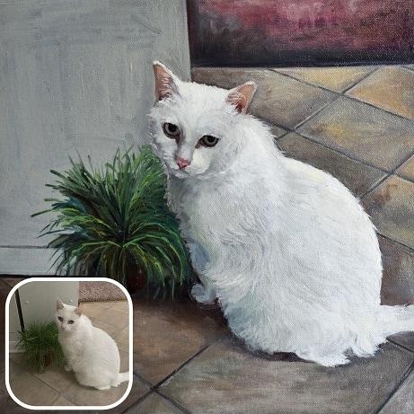 White cat 01